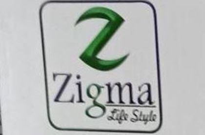 تصویر تولید کننده Zigma