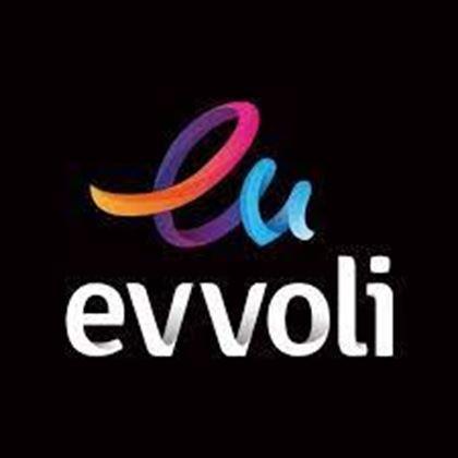 تصویر تولید کننده evvoli